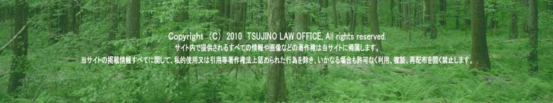 (C) 2010 TSUJINO LOW OFFICE, All rights reserved.